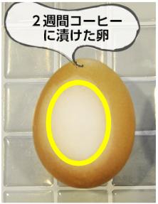 【口コミ】パールクチュールは白くならない?効果ない?検証しています!