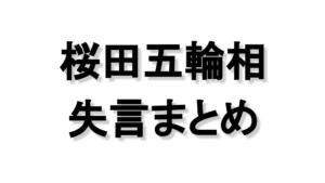 桜田五輪相辞任。ガッカリ発言などこれまでの失言まとめ
